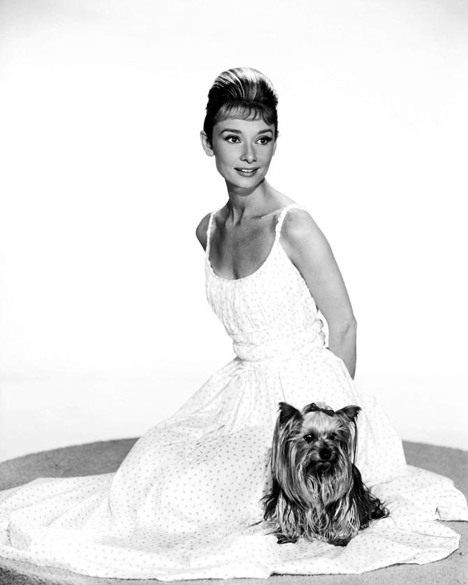 slika6 Stil Audrey Hepburn: Glamurozno i elegantno