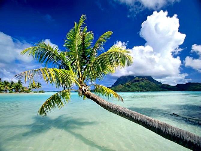 slika22.jpg2 Najlepše plaže sveta (3. deo)