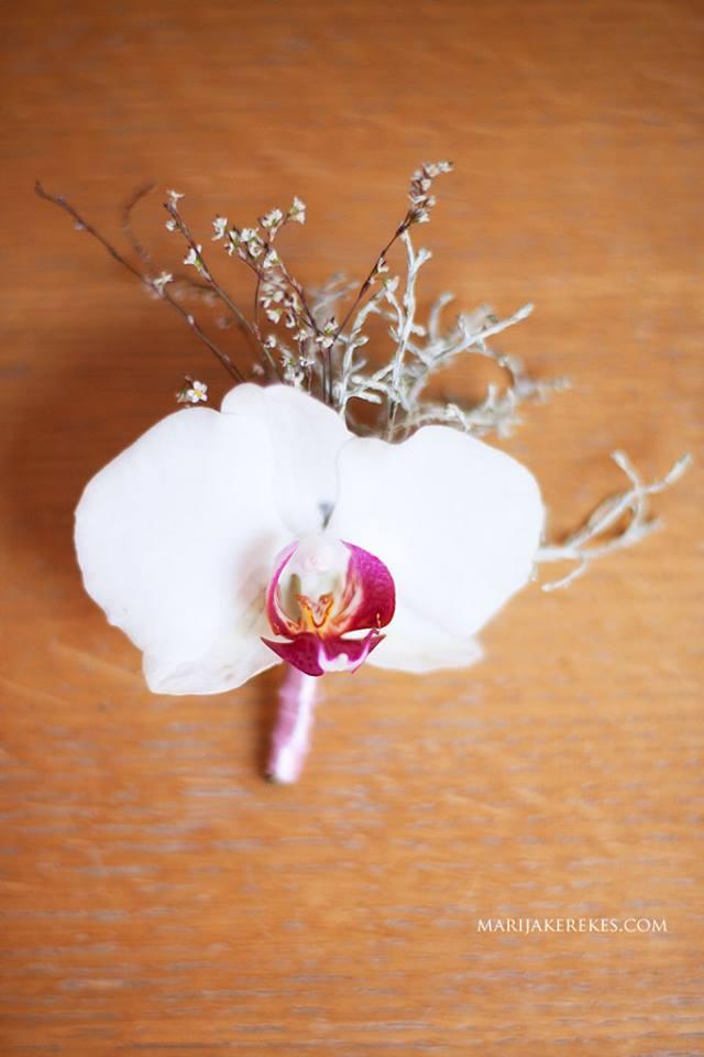 1394936 10202160282550881 140245916 n Bloom Design: Jesenja inspiracija