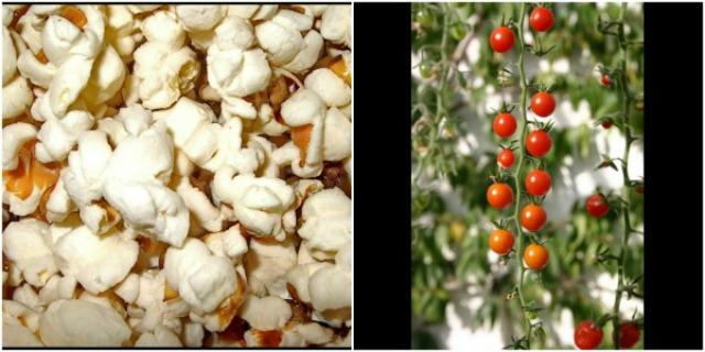 Slika 2 Zašto zameniti niskokaloričnu hranu mediteranskom?