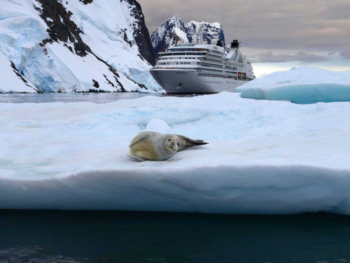 seabourn cruise antarctica Medeni mesec: Krstarite svetom