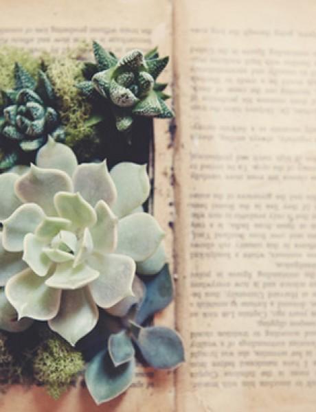 Venčanje iz snova: Dekoracija od knjiga
