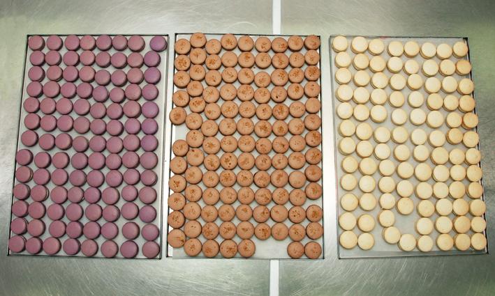 HomeMade Company Macarons 03 72dpi Ti divni slatki, fancy Macaronsi