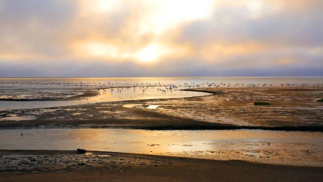 hbz best beaches walvis bay sm Odmor iz snova: Najlepše plaže na svetu