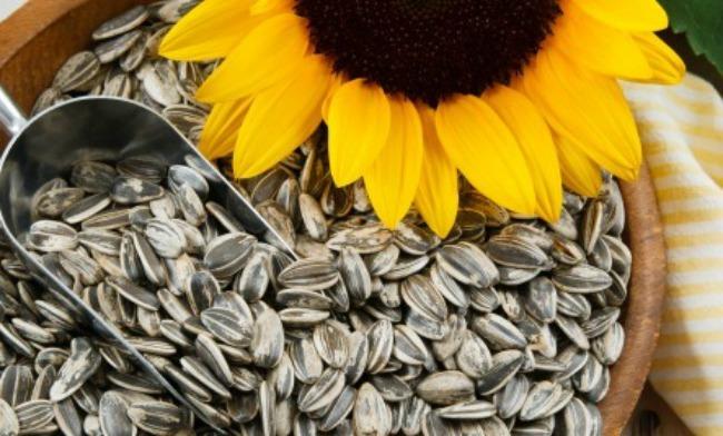 6 Seme suncokreta Oslobodite se stresa: Konzumirajte zdrave namirnice