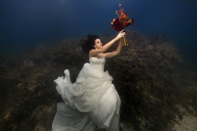 Podvodne fotografije mladenaca  Podvodne fotografije mladenaca