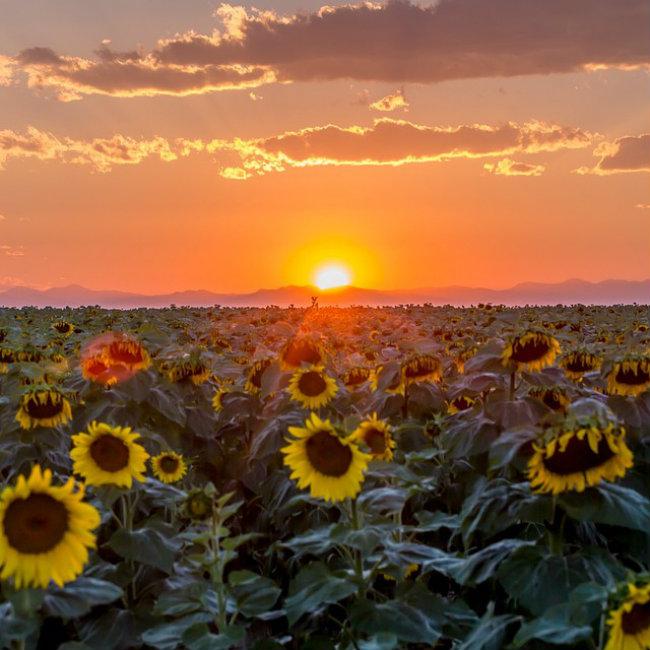 Romantični zalazak sunca 3 Najlepše fotografije: Romantični zalazak sunca