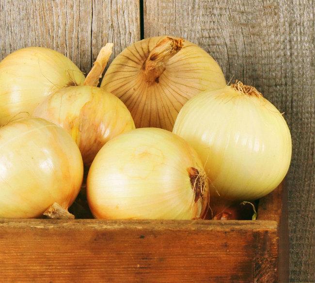 luk Jesenja hrana za detoksifikaciju
