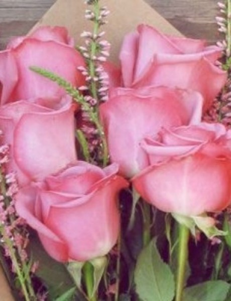 Šest biljaka idealnih za negu kože