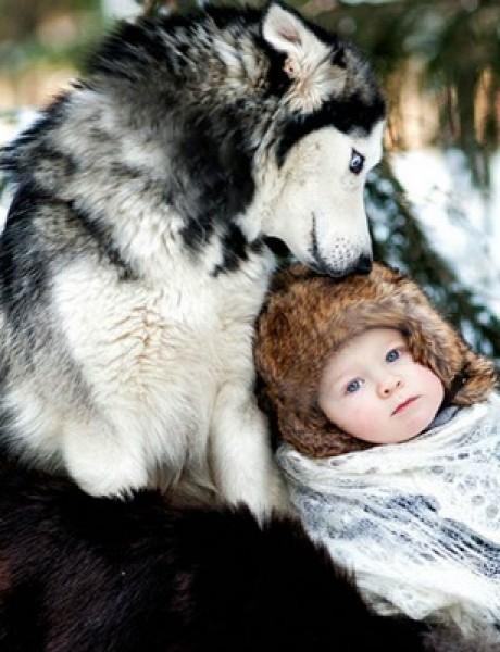 Veliki psi koji štite malenu decu