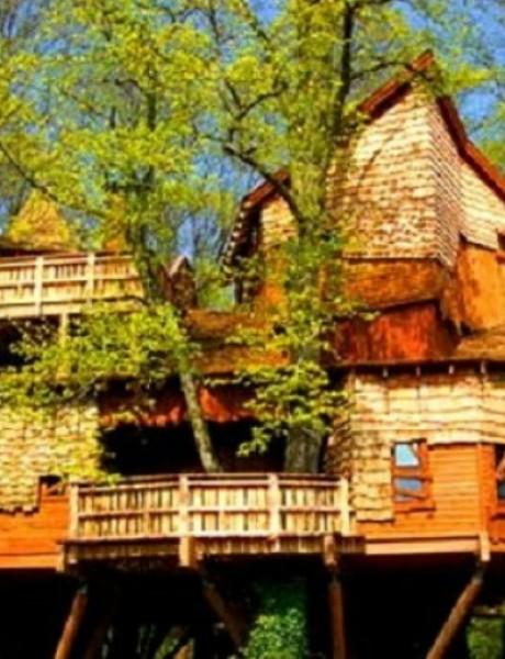 Egzotične kuće na drvetu
