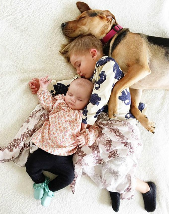 Dečak i kuca spavalice dobili pojačanje 1 Dečak i kuca spavalice, dobili pojačanje!