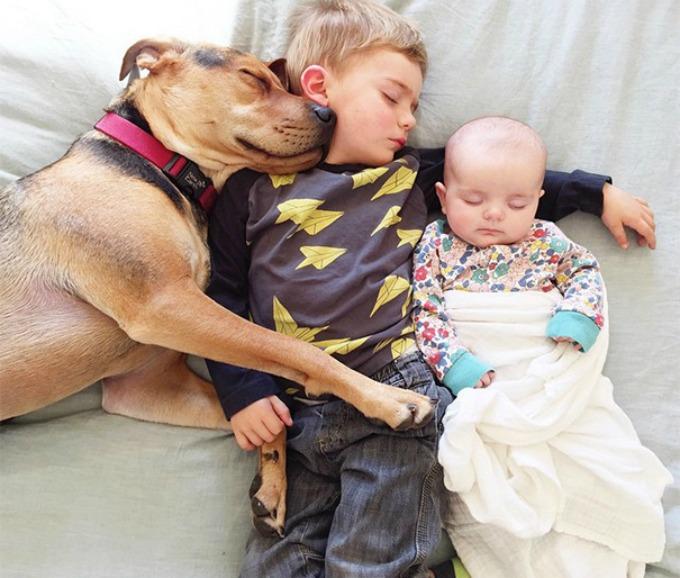 Dečak i kuca spavalice dobili pojačanje 4 Dečak i kuca spavalice, dobili pojačanje!