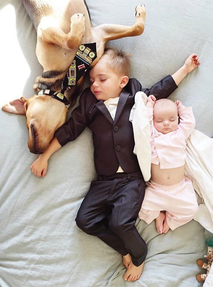 Dečak i kuca spavalice dobili pojačanje 5 Dečak i kuca spavalice, dobili pojačanje!