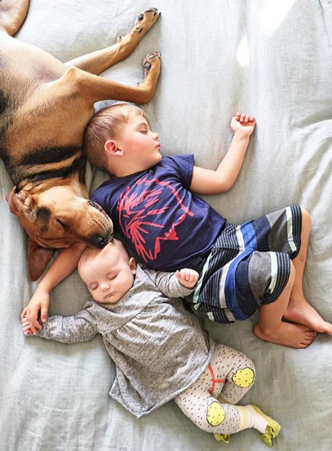 Dečak i kuca spavalice dobili pojačanje 8 Dečak i kuca spavalice, dobili pojačanje!