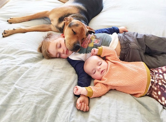 Dečak i kuca spavalice dobili pojačanje 9 Dečak i kuca spavalice, dobili pojačanje!