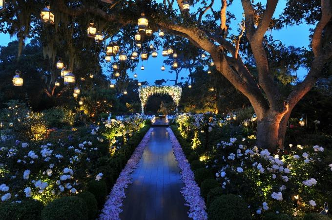 svadbena rasveta Svadbena dekoracija: Osvetljenje