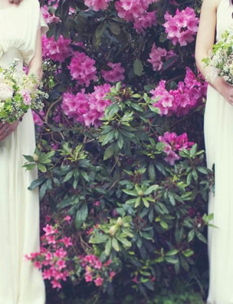 Kad se sestre slikaju pred venčanje