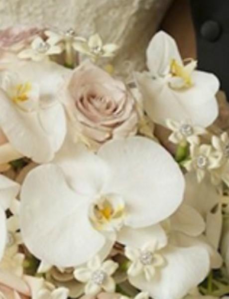 Orhideje za vaš savršen dan