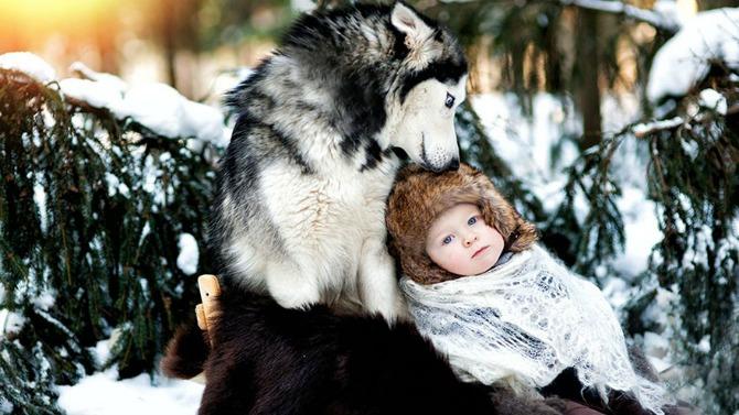 pas brine o bebi21 Da li vaš ljubimac može da bude najbolja dadilja?