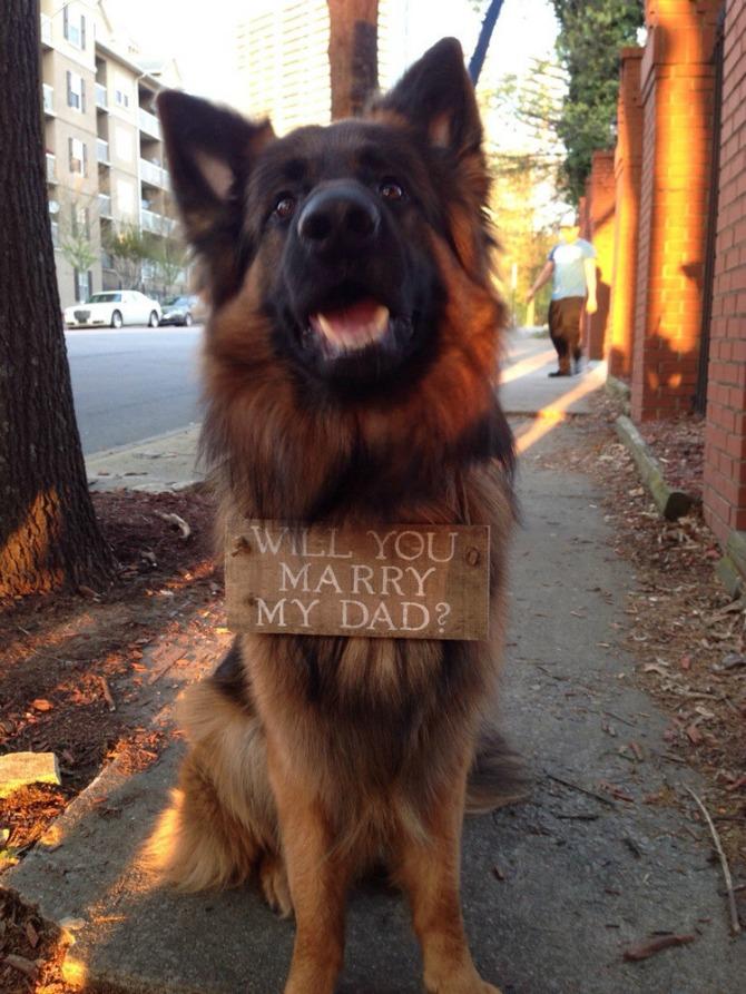 zaprosi je uz pomoć psa Zaprosi je uz pomoć...psa!