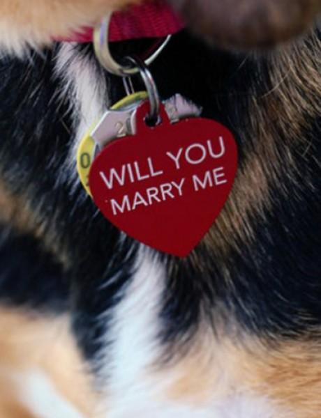 Zaprosi je uz pomoć…psa!