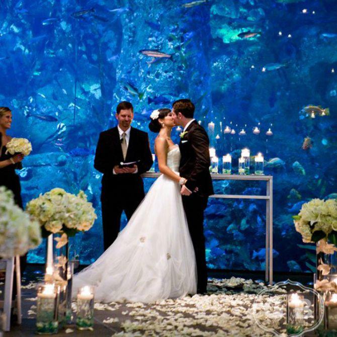 sala oslikana kao akvarijum Ideje za modernu dekoraciju venčanja