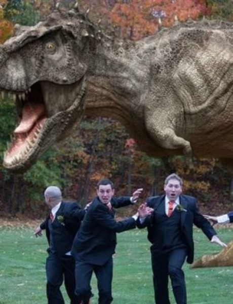 Najzanimljivije fotografije sa venčanja koje će vas nasmejati