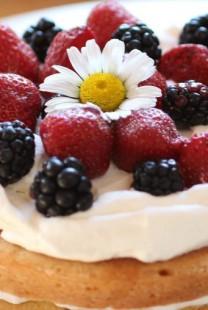 Mladenačke torte ukrašene bobičastim voćem