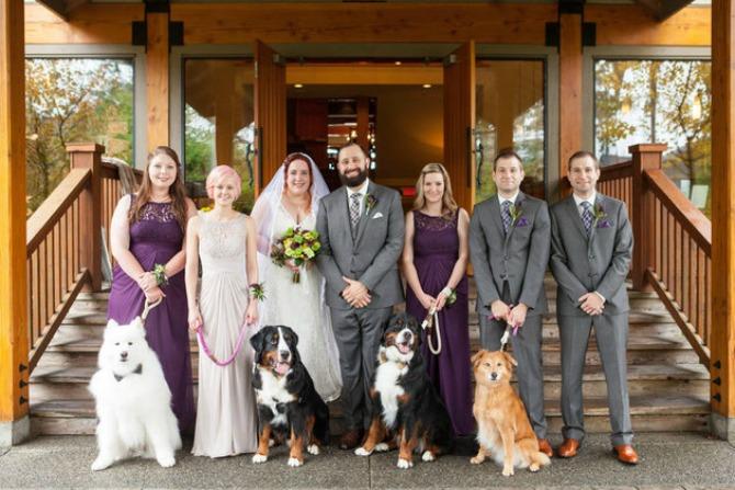 psi vencanje1 Venčanje na kome su četiri psa glavni gosti