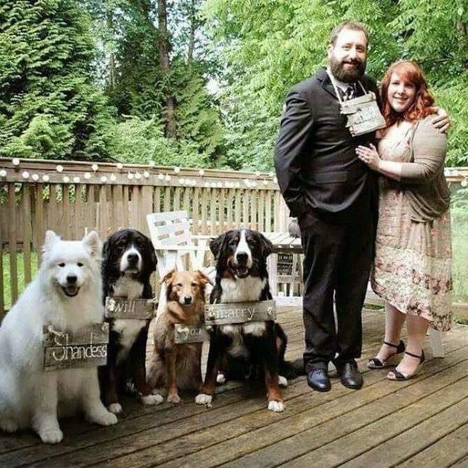 psi vencanje2 Venčanje na kome su četiri psa glavni gosti