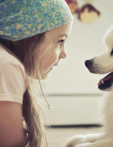 Zašto je vašem detetu POTREBAN kućni ljubimac