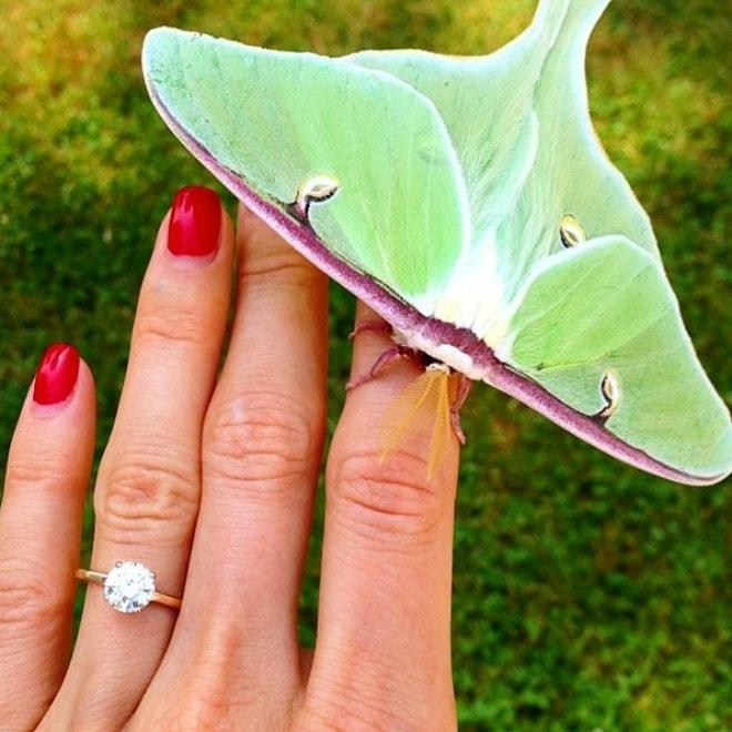 prsten verenicki min Najlepše vereničko prstenje sa Instagrama