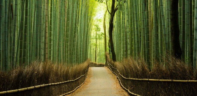 Kyoto Japan Najbolje destinacije za medeni mesec za svako godišnje doba